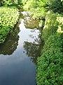 River Browney 20070630.jpg