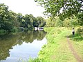 River Wey Navigation - geograph.org.uk - 963992.jpg