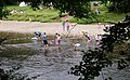 River Wharfe - Cooling Off^ - geograph.org.uk - 514637.jpg