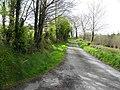Road at Drumcanon (geograph 2915454).jpg