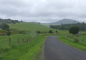 Atherton Tableland - Country road to the Cathedral Fig Tree in the Atherton Tablelands