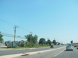 Roadside in Newington.jpg