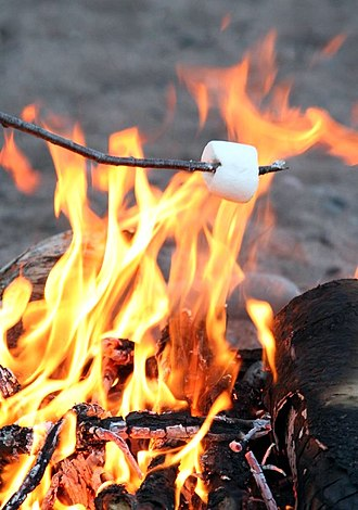 Marshmallow - Toasting a marshmallow