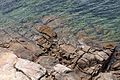 Rocha granítica na costa de Muros. Galiza MU51.jpg