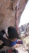 Rock climbing Bishop California.jpg