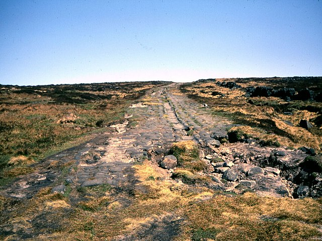 Roman Road, Blackstone Edge - geograph.org.uk - 1804285