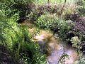 Ruisseau st jean Benquet 2.JPG