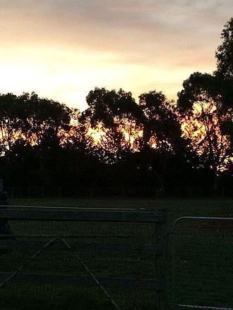 Pearcedale, Victoria - Rural sunset, Pearcedale, Victoria, Australia
