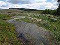 Rushyford Water, Bodmin Moor - geograph.org.uk - 842630.jpg