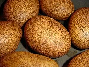 Russeting - Image: Russet potato