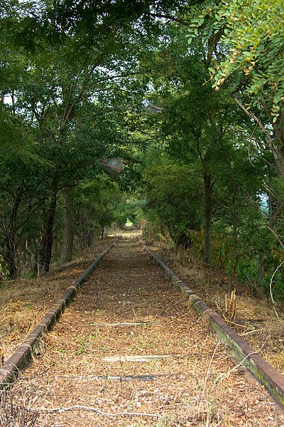 File:Rusted Rail (6067006204).jpg