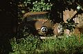 Rusty Old Car - New Orleans, Louisiana.jpg