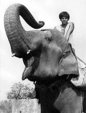 "Sajid Khan - Khan as ""Raji"" in Maya, circa 1967."