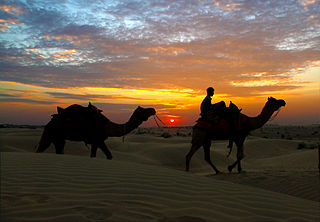 Take A Camel Ride To The Sand Dunes