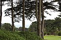San Francisco, CA USA - panoramio (13).jpg