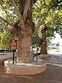 Santa Cruz de Marchena, Almería (45700538971).jpg