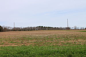 South Centre Township, Columbia County, Pennsylvania - Field in South Centre Township