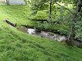 Schönenbodensee Abfluss.jpg