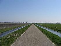 Schermer polder 1.jpg