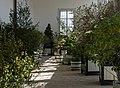 Schloss Hof - Orangerie.jpg