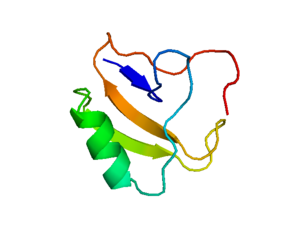 Scorpion toxin - Image: Scorpiontoxinprotein image
