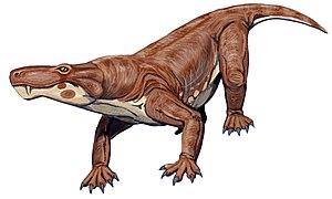 Scylacosauridae - Life restoration of Scylacosaurus