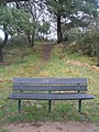 Seat at the bottom of Music Hill at The Heath, Petersfield - geograph.org.uk - 1134625.jpg