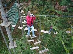 Parcours d'aventure sur un pont de singe