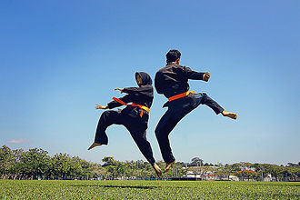 Traditional sports such as the martial art style Silat Melayu persist alongside modern sports. Seni silat melayu.jpg
