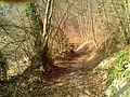 Sentiero Natura - panoramio - ErikIce.jpg