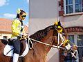Sergines-FR-89-carnaval 2017-chevaux-03.jpg