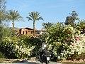 Sharm El Sheikh - panoramio (120).jpg