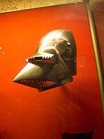 Sharp-faced helmet (14048670418).jpg