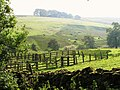 Sheepfolds in the Swin Hope valley - geograph.org.uk - 1065786.jpg