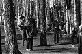 Sibeliuksen puisto - ser040238 - hkm.HKMS000005-km0000nz6v.jpg