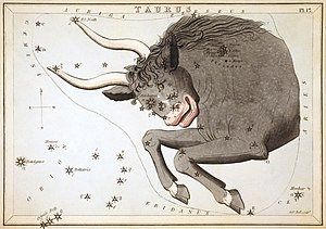 Taurus (constellation) - Taurus as depicted in Urania's Mirror, a set of constellation cards published in London c.1825.