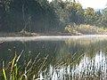 Silver Lake, Whatcom County, Washington (2008-10-18), 04.jpg