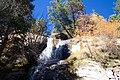 Single Tree Falls - panoramio.jpg