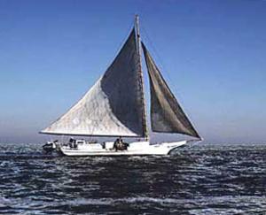 Skipjack (boat) - Skipjack under sail