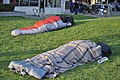 Sleeping in Steinbrueck Park.jpg