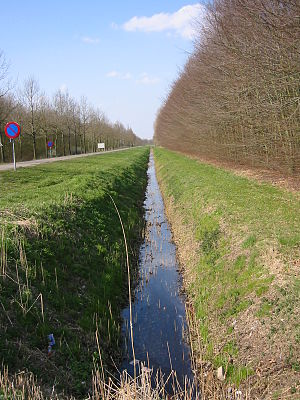 Ditch - A well maintained ditch in the Netherlands