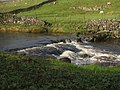 Small Rapid on the Wharfe. - geograph.org.uk - 285535.jpg
