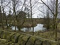 Small pond with island and watchful pony - geograph.org.uk - 1739377.jpg