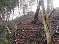Snailslynch World War II pillbox, Farnham 01.jpg