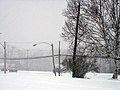 Snow squall (358150510).jpg