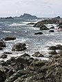 Solander Island.jpg