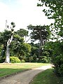 Somerleyton Hall - gardens - geograph.org.uk - 1506794.jpg