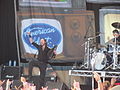 Soundwave 2014 Korn.jpg