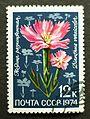 Soviet stamps 1974 12k Dianthus versicolor.JPG