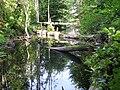 Speck Mühlengraben 2009-08-31 131.jpg